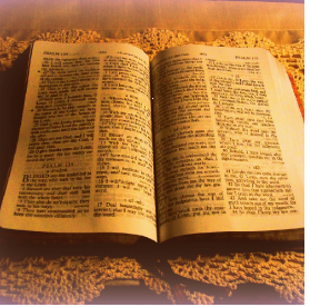 bible picture [pp]